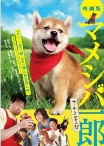 [DVD] 映画版 マメシバ一郎 フーテンの芝二郎