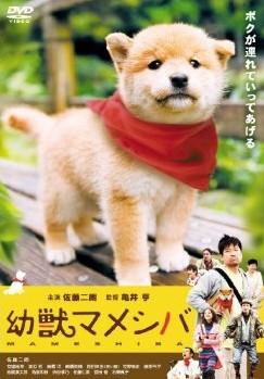 劇場版 幼獣マメシバ