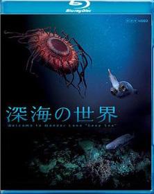 Blu-ray深海の世界