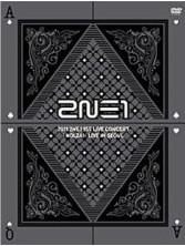 2NE1 1st Concert 'NOLZA!' LIVE in SEOUL