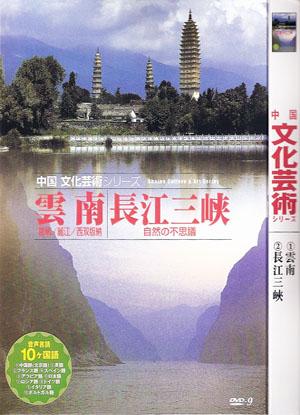 中国文化芸術 8