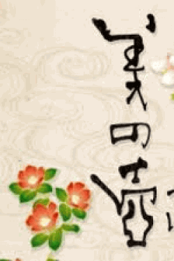 [DVD] 美の壺