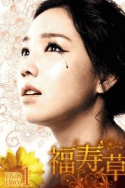 [DVD] 福寿草 DVD-BOX 1+2
