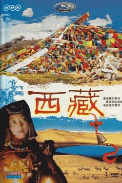 [DVD] NHK 西蔵