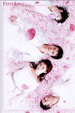 First Love DVD-BOX