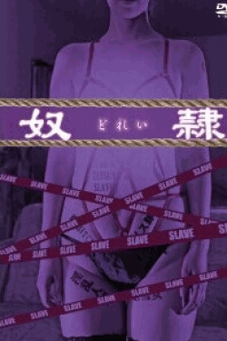 [DVD] 奴隷