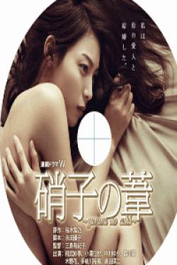 [DVD] 硝子の葦