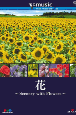 花~Scenery with Floews~ V-music