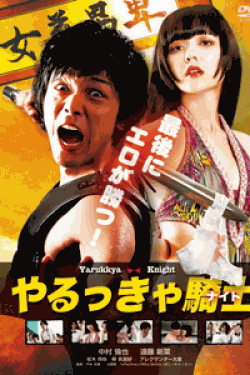 [DVD] やるっきゃ騎士