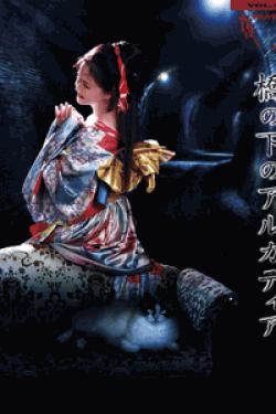 [DVD] 夜会VOL.18「橋の下のアルカディア」
