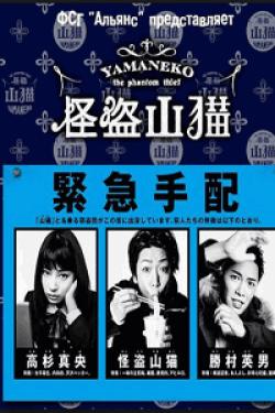 [DVD] 怪盗 山猫【完全版】(初回生産限定版)