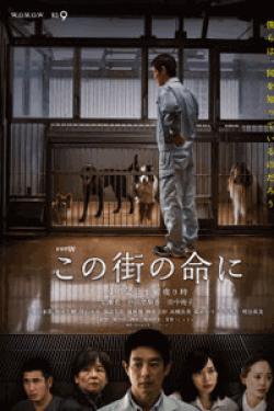 [DVD] この街の命に