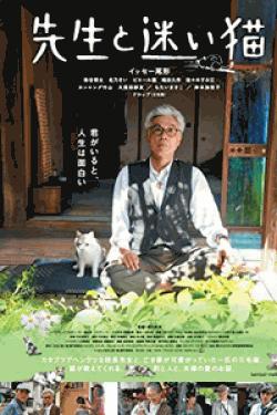[DVD] 先生と迷い猫