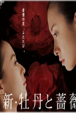 [DVD] 新・牡丹と薔薇【完全版】(初回生産限定版)