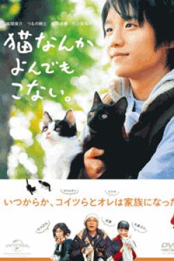 [DVD] 猫なんかよんでもこない。