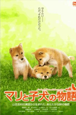 [DVD] マリと子犬の物語 スタンダード・エディション
