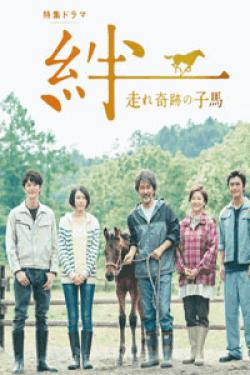 [DVD] 絆~走れ奇跡の子馬~