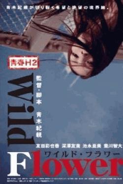 [DVD] 青春H2 Wild Flower ワイルド・フラワー