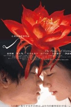 [DVD] シャニダールの花 特別版