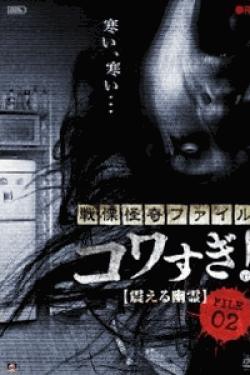 [DVD] 戦慄怪奇ファイル コワすぎ! FILE-02 震える幽霊