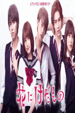 [DVD] dTV×FOD共同製作ドラマ「花にけだもの」【完全版】(初回生産限定版)