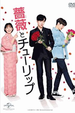 [DVD] 薔薇とチューリップ 通常版