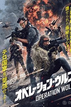 [DVD]  オペレーション・ウルフ